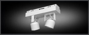 2- Spot Adjustable Recessed Downlight Illuminated Module